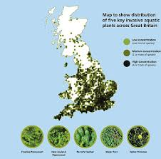Gardening Zones Uk - gardeners told to lead the fight against weeds that are taking