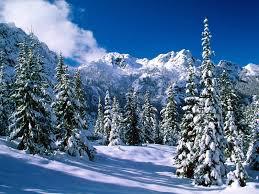 88 entries in winter wallpapers desktop group