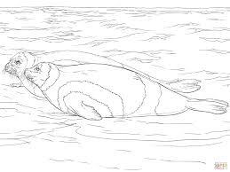 Seal Ribbon Ribbon Seals Coloring Page Free Printable Coloring Pages