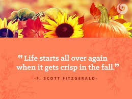 6 quotes to get you excited about fall autumn quotes fall quotes