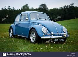 blue volkswagen vintage blue volkswagen vw beetle car on grass stock photo
