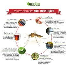astuces anti moustiques les fiches pratiques