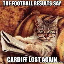 Newspaper Cat Meme - the football results say cardiff lost again newspaper reading cat