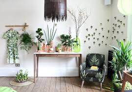 plants for living room home decor xshare us