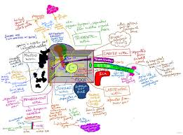 Anatomy Behind The Ear Anatomical Relations Of The Middle Ear Visual Mnemonic Medical