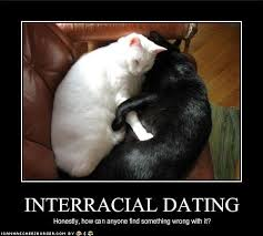 Interracial Dating Meme - honestly how can anyone find something wrong with it