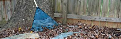 residential yard waste collection waste industries