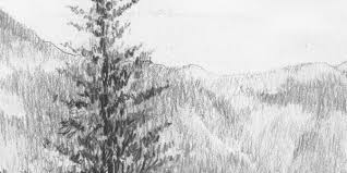 gallery easy pencil drawings of nature
