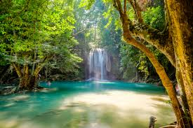 waterfall and river in forest 4k ultra hd fondo de pantalla and