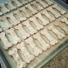 recipes for dog treats alton brown s stinkin dog treats recipe