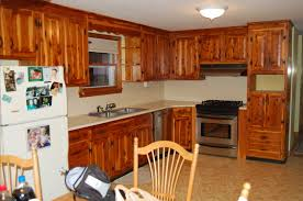 refaced kitchen cabinets ideas design ideas and decor
