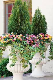 Winter Container Garden Ideas 121 Container Gardening Ideas Container Gardening Evergreen And