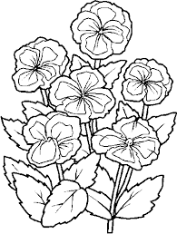 flower coloring pages color book