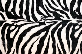Leopard Bathroom Rug by Flooring Zebra Print Rug Zebra Print Bathroom Rugs Faux Zebra