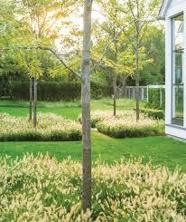 tour a classical new england home with a contemporary landscape