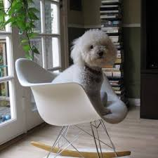 Design Within Reach Eames Chair Design Within Reach 24 Reviews Home Decor 332 Santa Monica