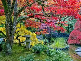 imagenes de jardines japones los colores del otoño jardines japoneses de butchart canadá