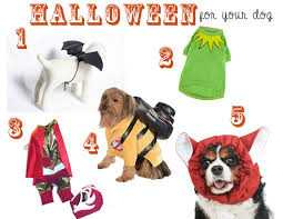 Halloween Costumes Puppies Friday Fetch Halloween Costumes Dog Ammo Dachshund
