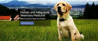 compassion veterinary hospital holistic new hampshire integrative