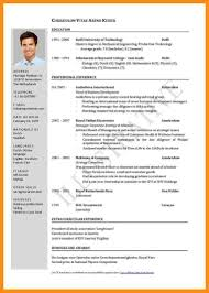 english resume example pdf excellent resume cv example 13 english cv sample u2013 resume example