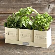 window planters indoor window sill garden windowsill planter herb garden planter herb