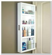 Mirrored Storage Cabinet Behind Door Storage Cabinet With Full Length Mirror Over The Door