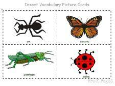 7 silly bug crafts delight bug insect