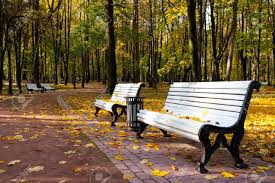 benches in idyllic park area stock photo picture and royalty free