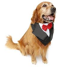 Halloween Costume Large Dogs Nacoco Wedding Tuxedo Large Dog Bandana Scarf Adjustable Cat