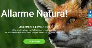 si e habitat allarme natura l europa si mobilita per salvare habitat e animali