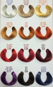 Argan Oil Hair Color Chart Elgon I Care Conditioning Color Treatment