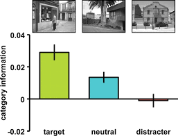 neural evidence for distracter suppression during visual search in