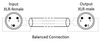 v1 audio input ouput tortuga audio
