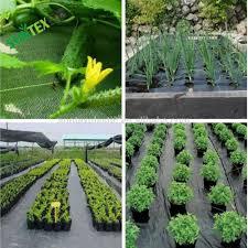 Mulching Vegetable Garden by List Manufacturers Of Peg Plastic Mulch Buy Peg Plastic Mulch