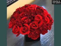 Red Carnations Pretty And Lovely Flower Pictures Red Carnation Centerpieces