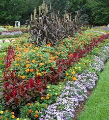 Fall Garden Flag Roses Bloom At Elizabeth Park U2014 Enchanted Gardens