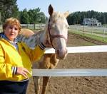 Image result for Outback Lodge and Stables Stanwood MI