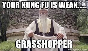 Meme Kung Fu - your kung fu is weak grasshopper kung fu master meme