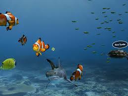 aquarium aquarium vr android apps on google play