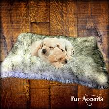 Faux Fox Fur Throw Designer Faux Fur Dog Bed Pet Bed Cat Bed Pelt Rug Plush
