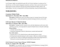resume awesome and beautiful resume summary examples for