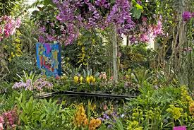 Botanical Garden Orchid Show Orchid Show In Nyc Guide Including Where To Get Tickets