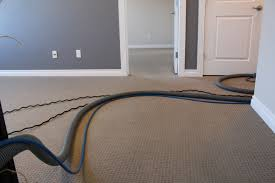 a non toxic carpet cleaning service for drier cleaner and