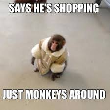 Meme Monkey - 35 most funny monkey meme pictures and images