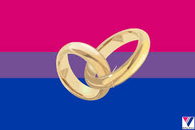 Straight Pride Flag Binet Usa U0027s Blog Binet Usa Bisexual Media Guide