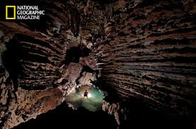 cave dwelling plants strange subterranean nettles discovered in