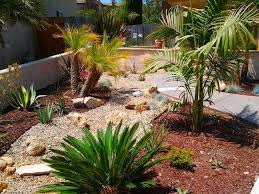 Desert Backyard Ideas Cool Desert Landscaping Ideas With Small Path Also Short Plants In