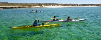 island hopping la paz loreto 9 days sea u0026 adventures mar y