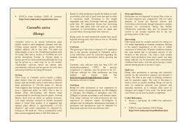 native plant fertiliser brassica carinata ethiopian mustard ustaxpayerswill