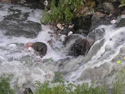 fsot essay sample essay on river pollution in hindi jokes around the worldd tk essay on yamuna river pollution in hindi sk home
